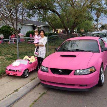 pink mustangs pic