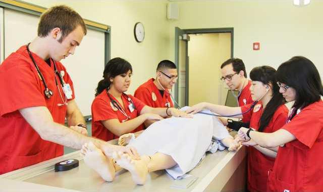 Nursing Program 1