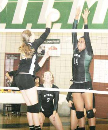 Pitman VB pic1