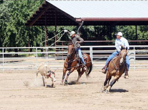Rodeo pic1
