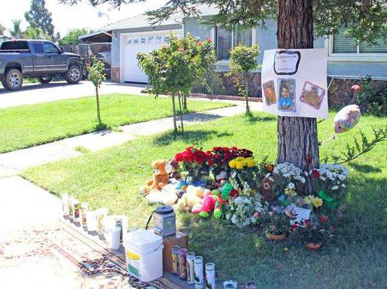 boxwood memorial