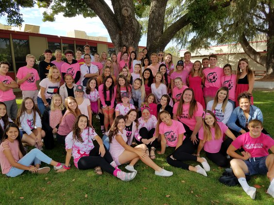 pink out 1.jpg