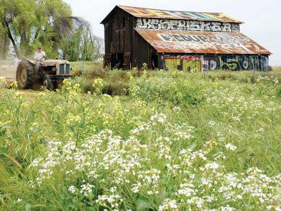 GraffitiBarn-1-RAR-LT