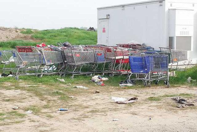 shopping-carts-LT