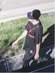 Vehicle Theft pix.jpg