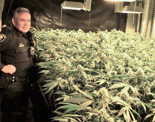 pothouse deputy DSC_2194.jpg