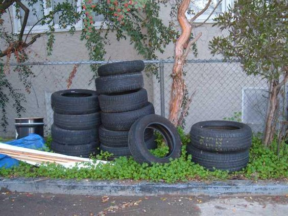 Waste Tires1