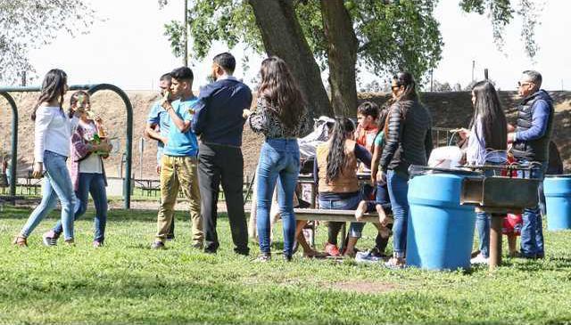 Park picnic pix