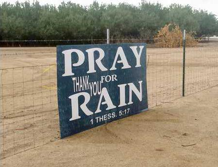 rain pic