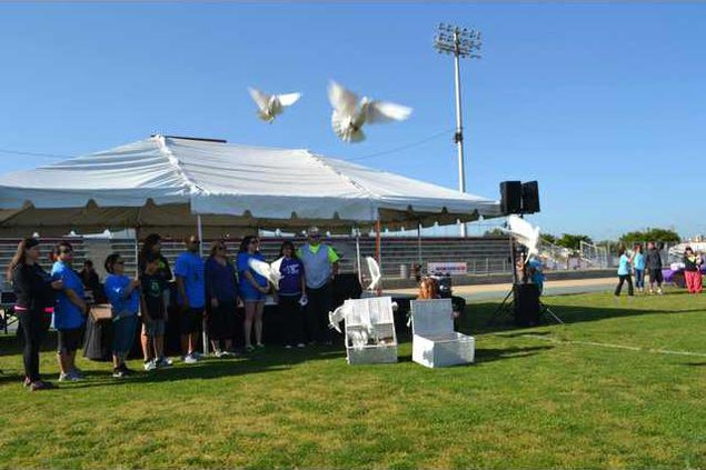 Doves at Relay