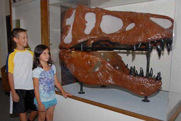 Dinosaur pix