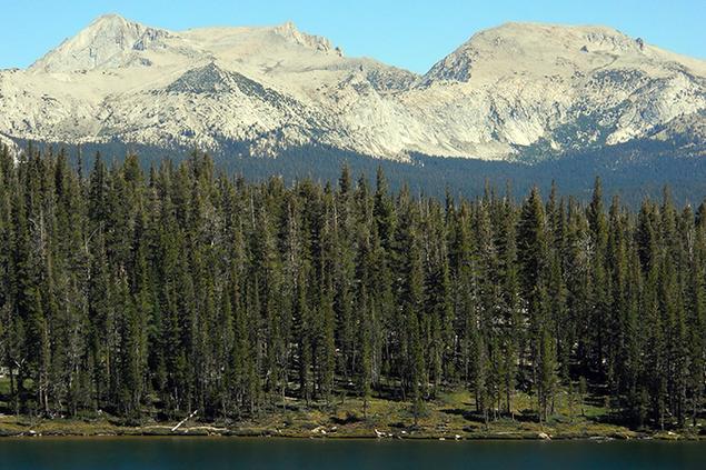 278-Yosemite.png