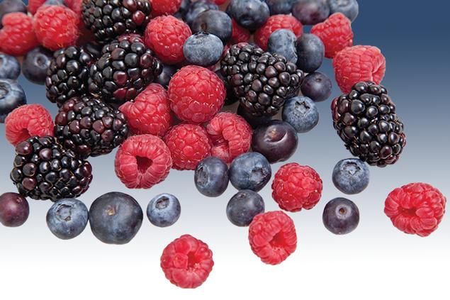 2807-Berries.png