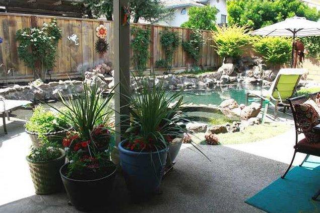 OER Garden pix