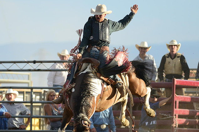 307-Rodeo3.png
