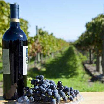 4-4 Vineyards pix