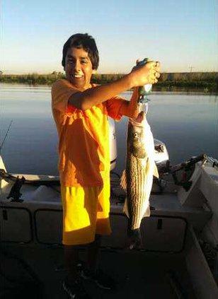 FISH-ballardo