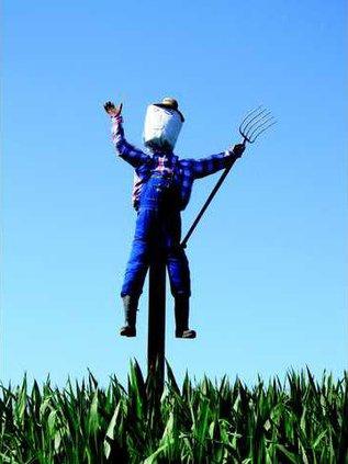 Farmer Frank