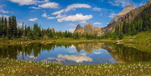 Park preserve pix