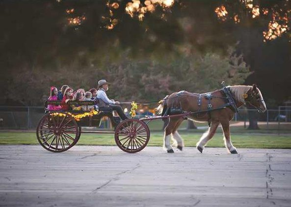 pic peppermint creek carriage n copy