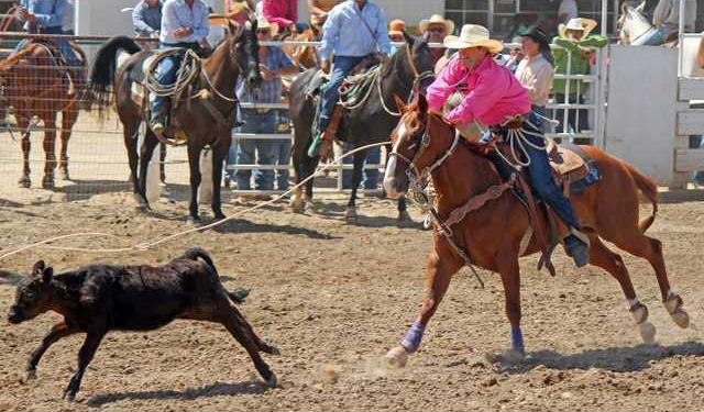 8-21 OAK JR Rodeo Kent