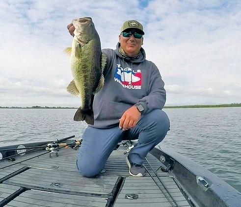 Bulletin fishing