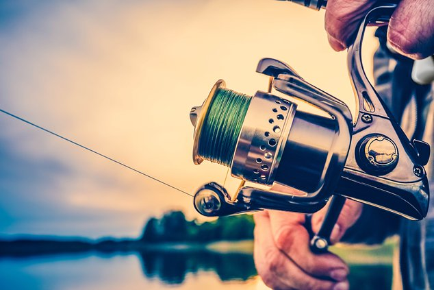 cal fishing