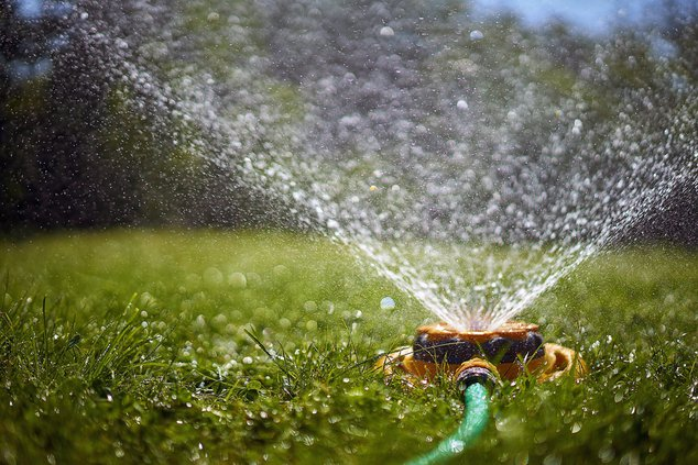 sprinkler on lawns