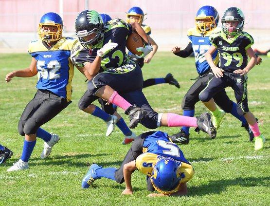 Ripon Knights take down Seahawks