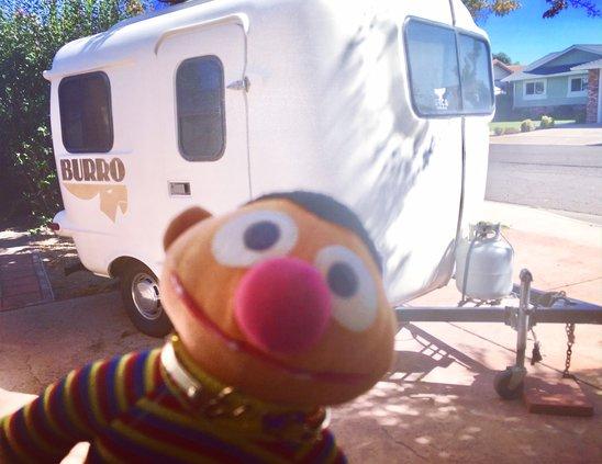 Where's Ernie