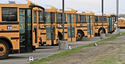bus teaser