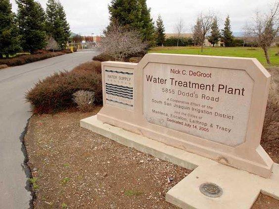 wanter plant entrance