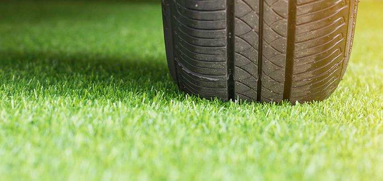 parking on grass