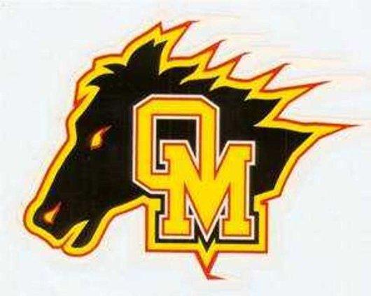 logo OHS