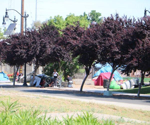homeless tide