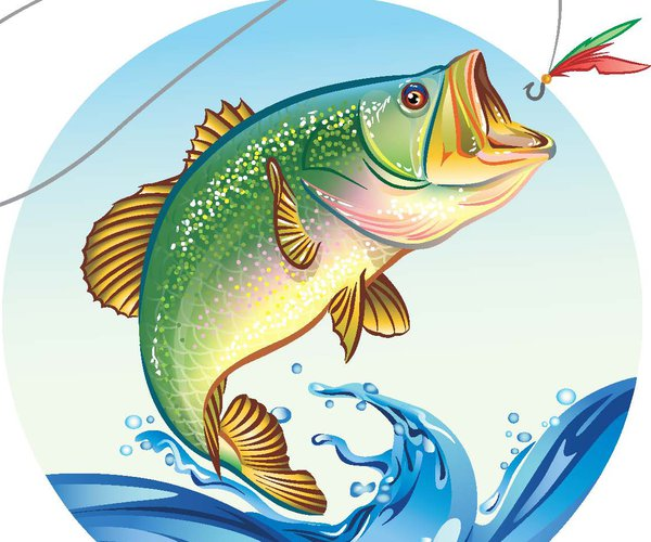 fish pix