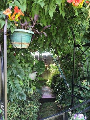 gardening hallway