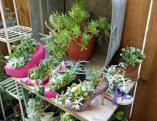 gardening heels