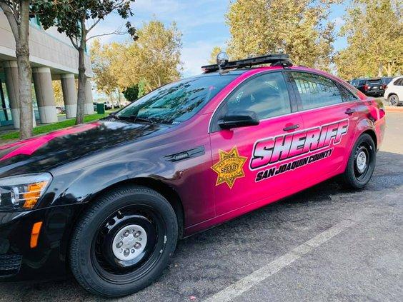 patrol cars pink