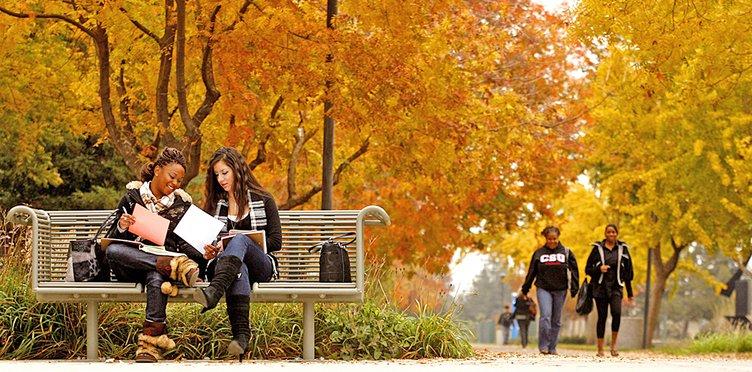 CSUS students