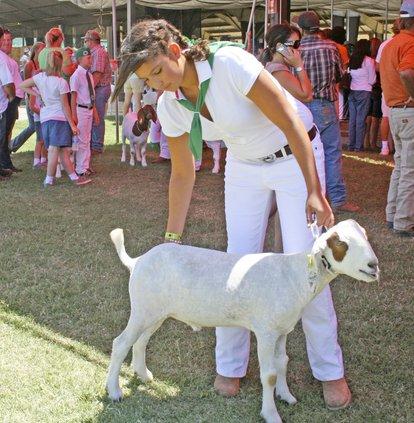 Merced County Fair