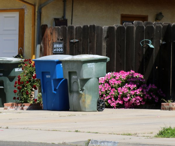Garbage cans left out