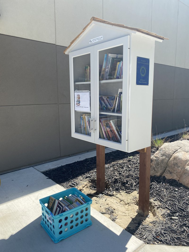 Little Free Libraries 2