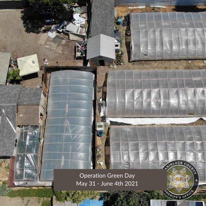 pot greenhouse