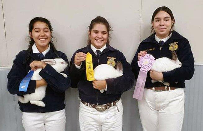 Liana Guzman, Arianna Gutierrez and Crystal Melgoza.