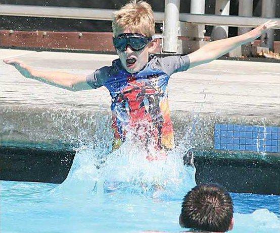 swim-dolphins-pic4