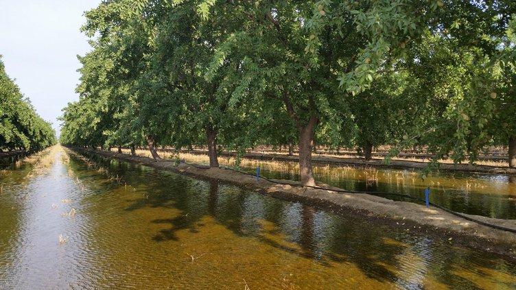 flloid irrigation