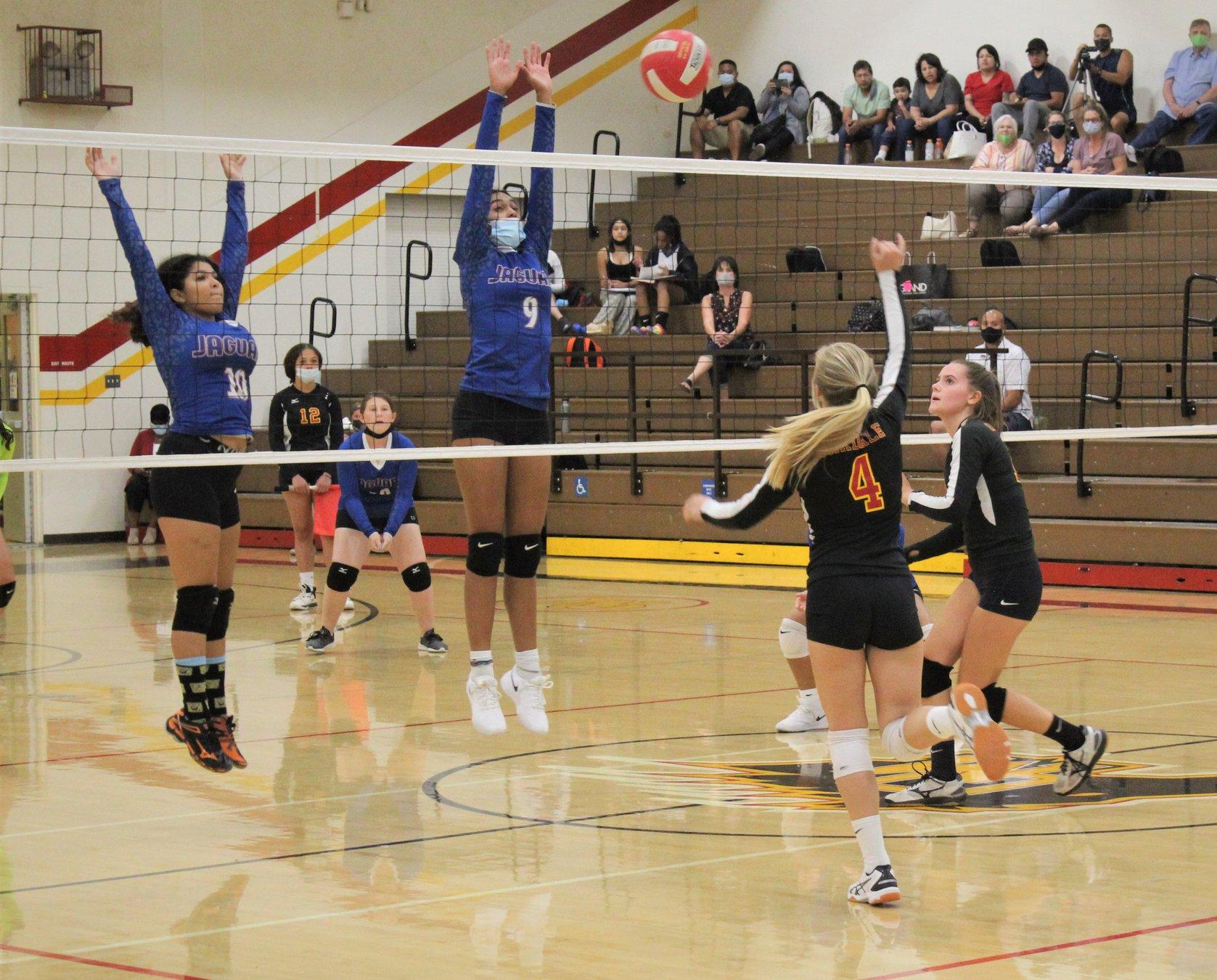 Girls Varsity Volleyball Zeroed By Eastchester in Season