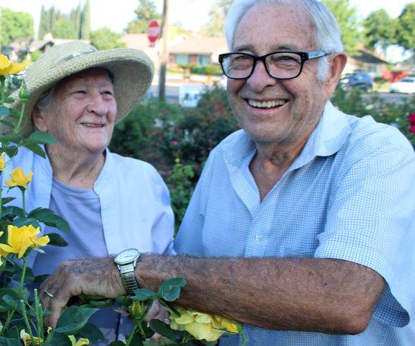 Doyle Cumming roses