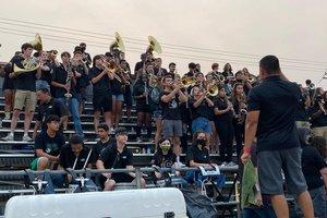 Pitman band
